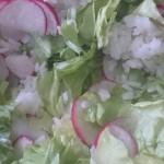 Radischen, Salat