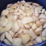 Äpfel geschnitten