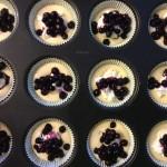 Heidelbeer-Frischkäse-Muffins