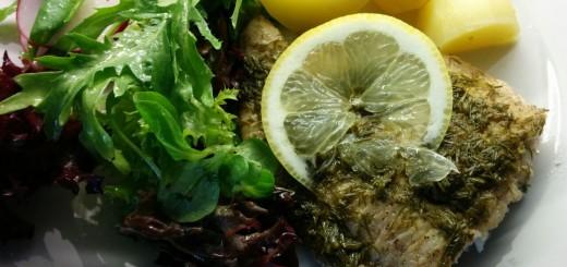Welsfilet mit Dille-Zitronen-Sauce